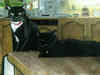Two Cats, (pastel drawing) Image.
